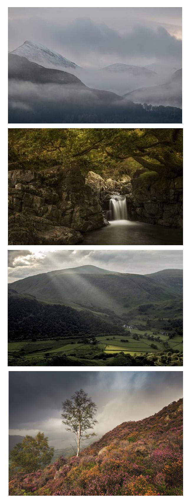 Top three:Carmen Norman Photography  Bottom Image: Stuart McGlennon Photography