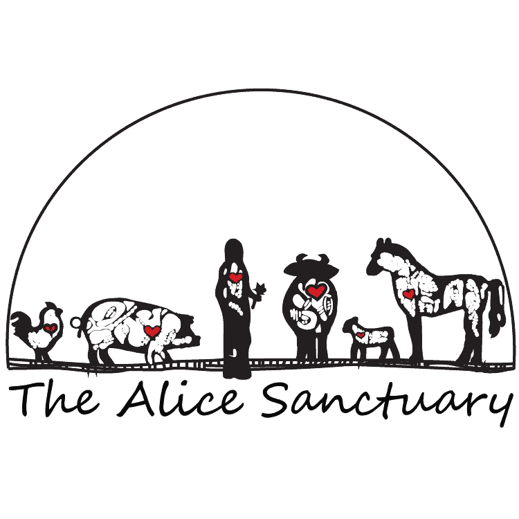 The-Alice-Sanctuary-logo.png