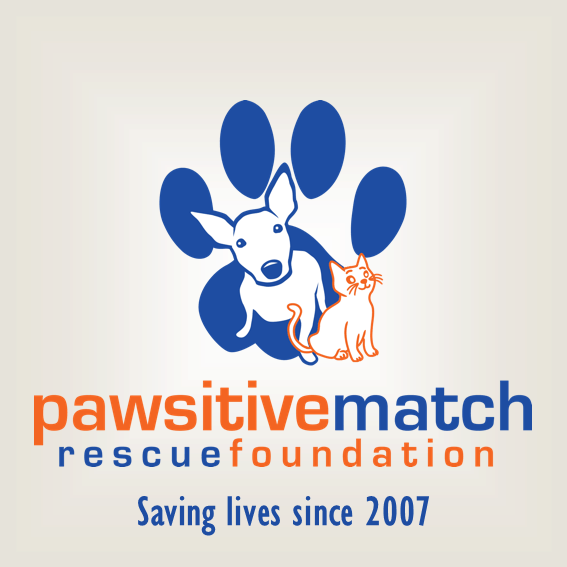 Pawsitive-match-rescue-foundation.png