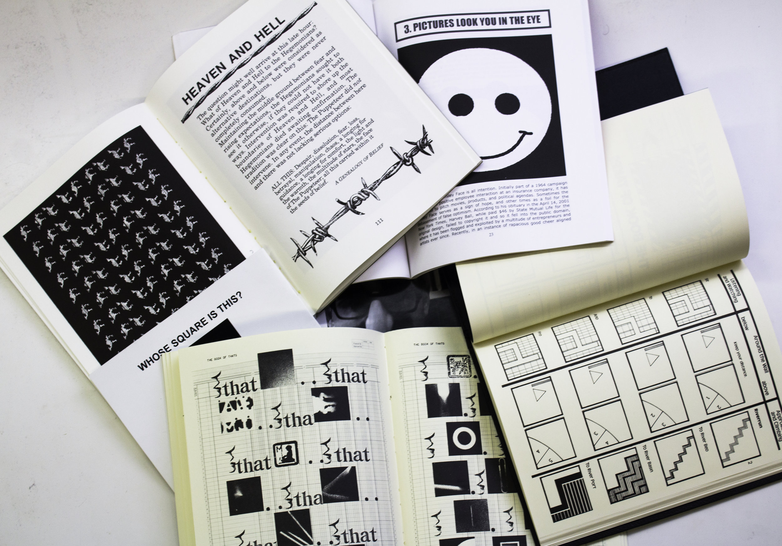 A spread of Zelevansky's works. Courtesy of Kyleen Pickering.