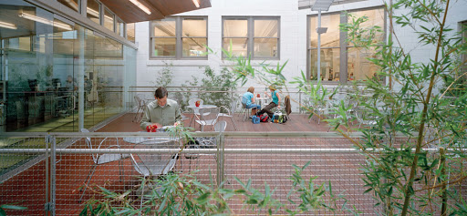 Carnegie Library of Pittsburgh Main Facility in Oakland, view of the bamboo courtyard. Pittsburgh, 2004, EDGE Studio (GBBN Architects). Photo: Dennis Marsico. Courtesy GBBN.