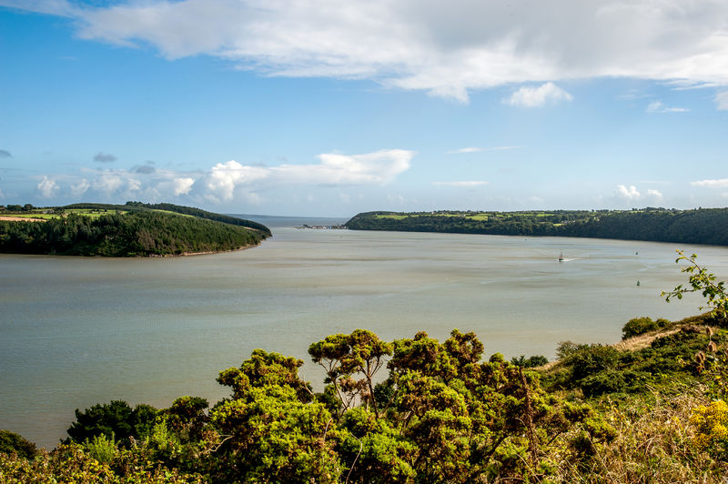 Waterford Estuary.jpg