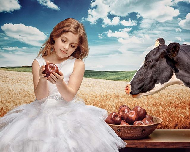 Photographer: Lisa de Recat Hair & Makeup: Shawna Shelton @studiosixsalonandspa Model: Adrianna  #derecatphotography  #phaseone #broncolor #portraitphotography #seattle#pacificnorthwest #seamless#littlegirl#dressup#partydress#angel#prettygirl#grassfield#cow#apples