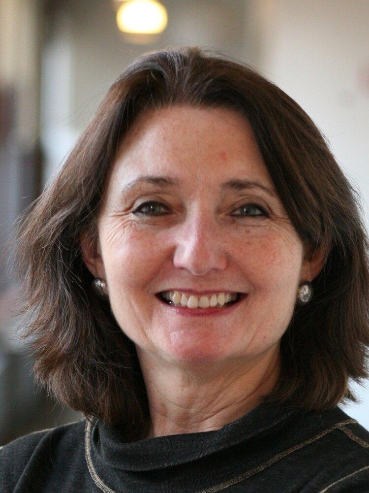 Dr. Diana Taylor - Co-investigator - New York University / Hemispheric Institutediana.taylorny@gmail.com