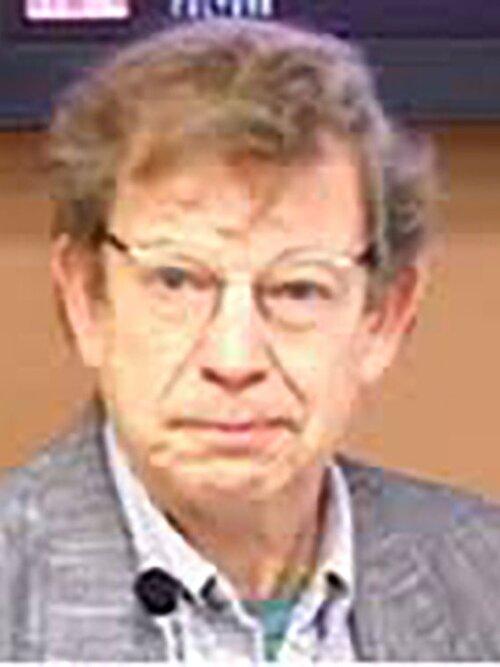 Professor Andrew Wernick - Co-investigator - Trent Universitywernick.andrew@gmail.com