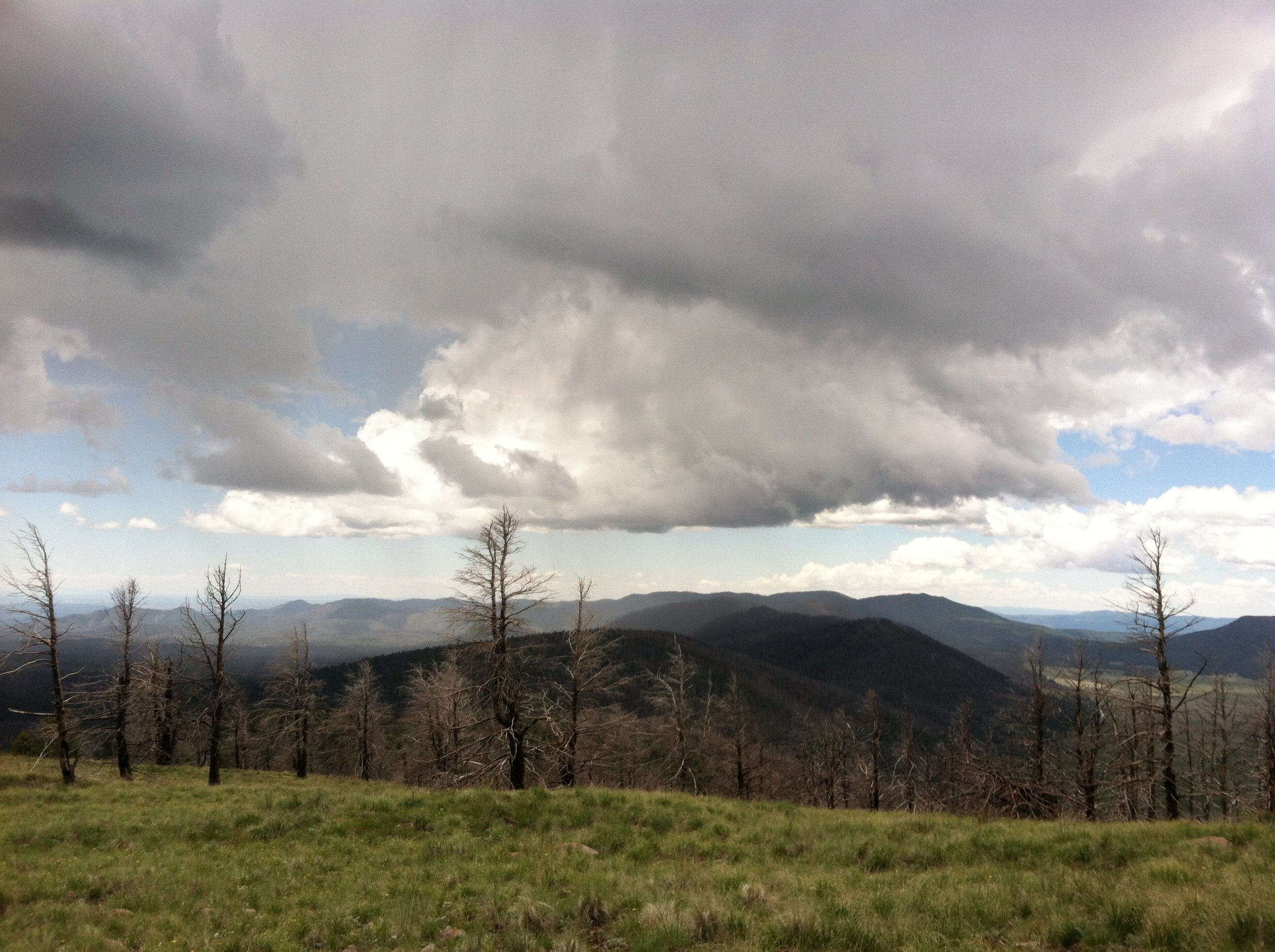 Looking out from the top of cerro grande onto a stormy summer afternoon in the jemez mountains
