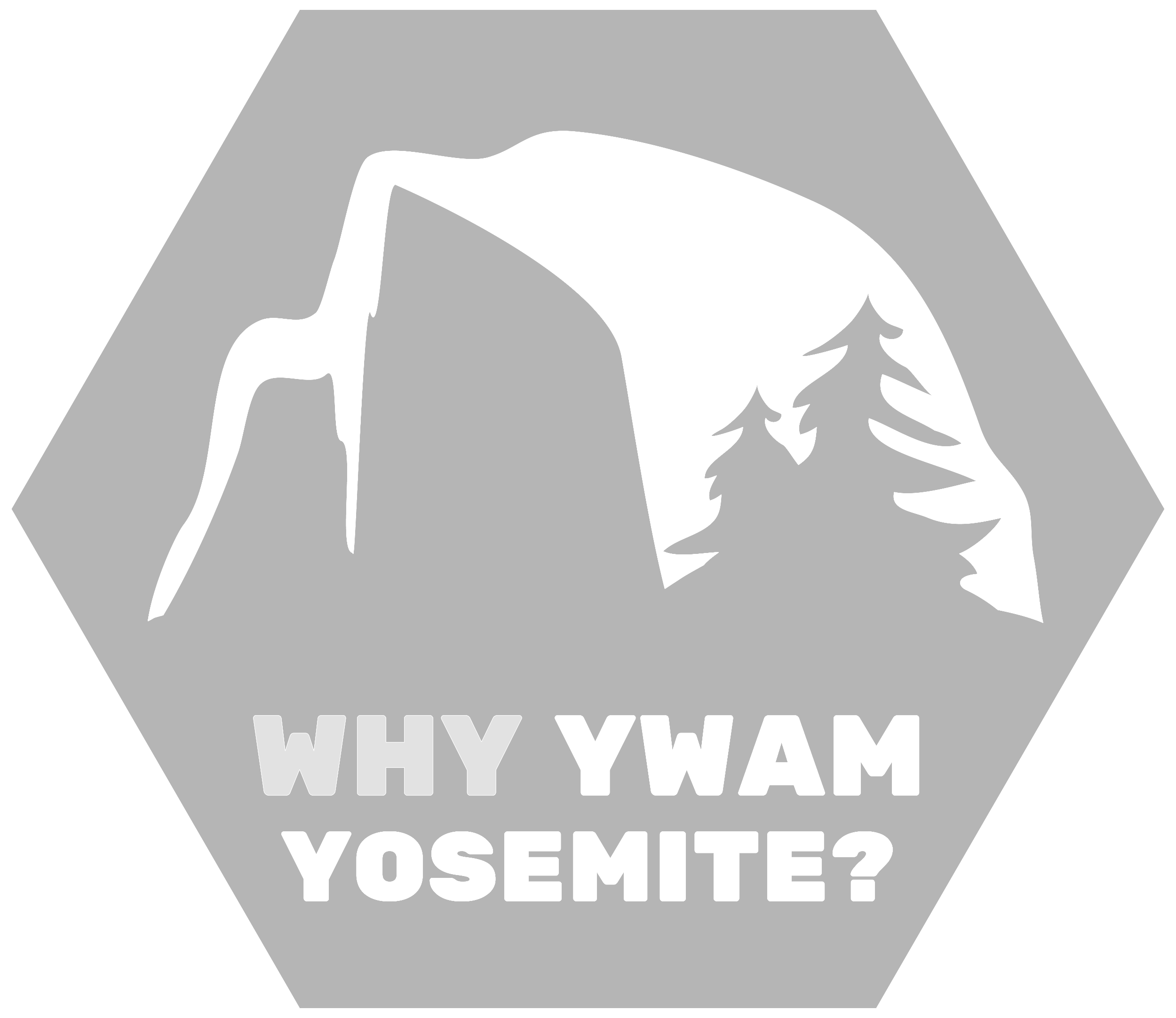 why yosemite2.png