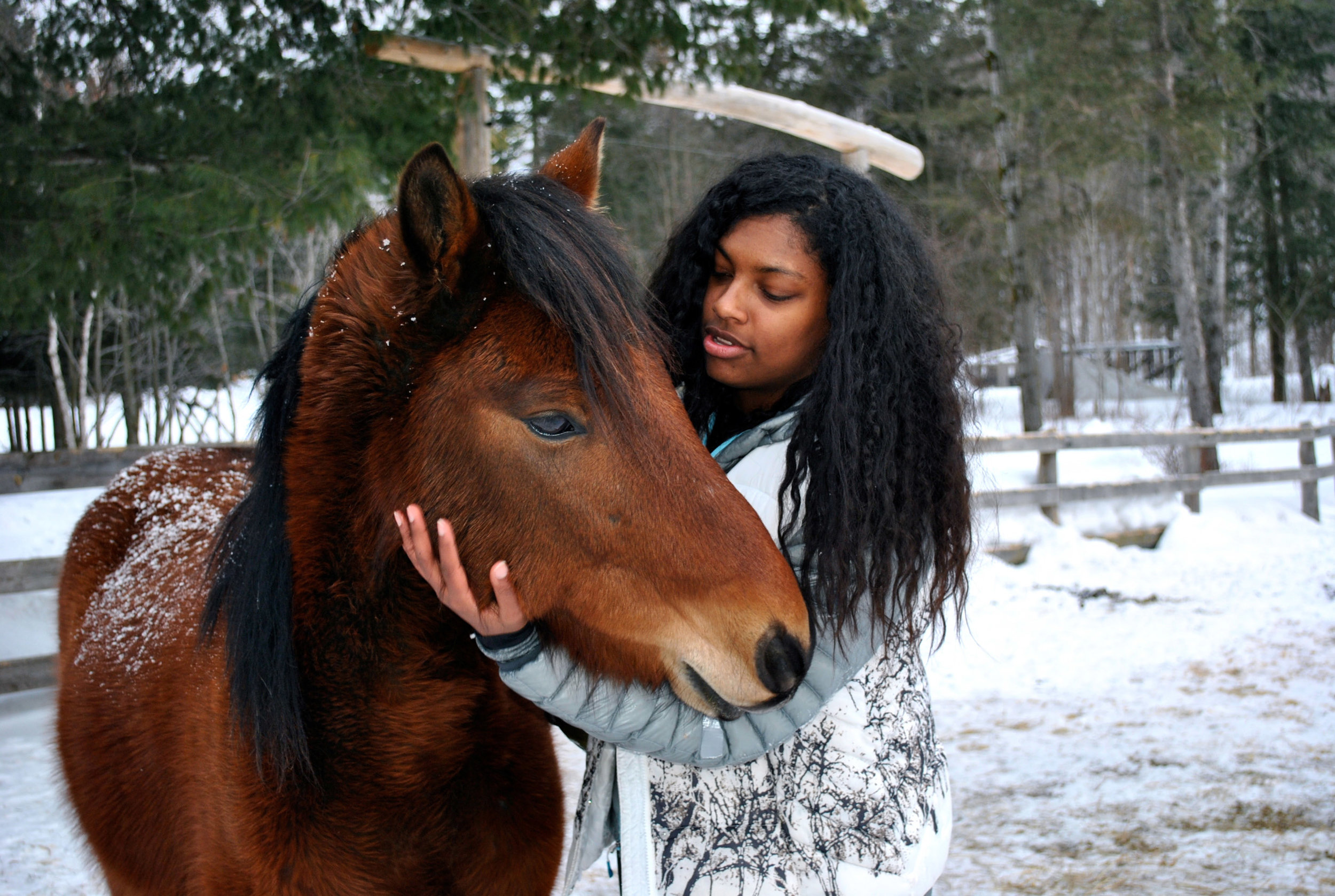 Olivia_Cobra_Horse.jpg
