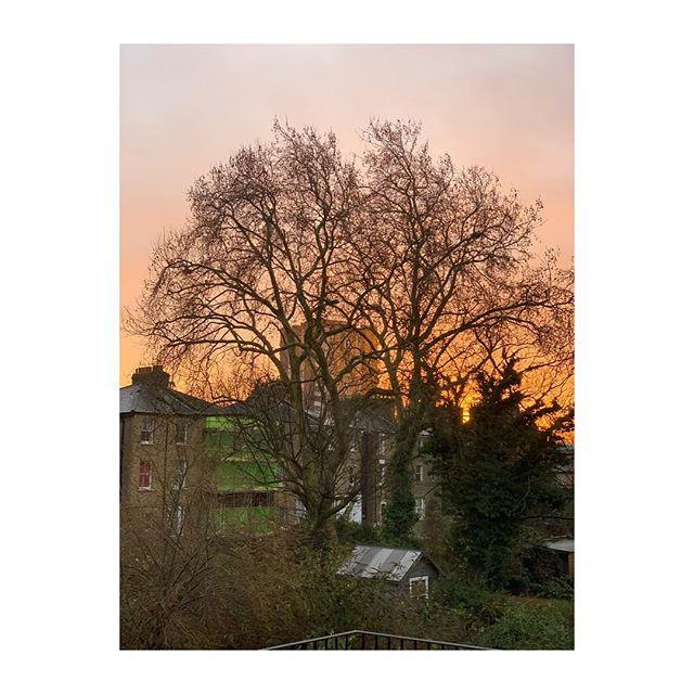 Happy Holiday Sunrise 🌅🎄