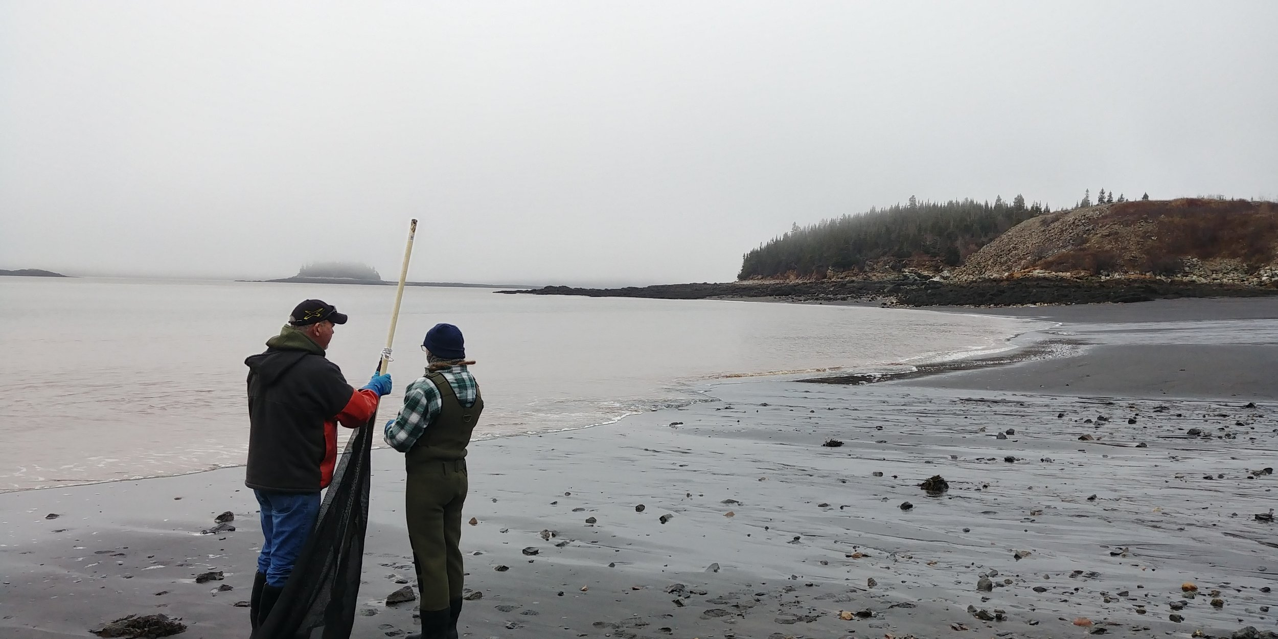 Working in the Musquash Estuary Marine Protected Area