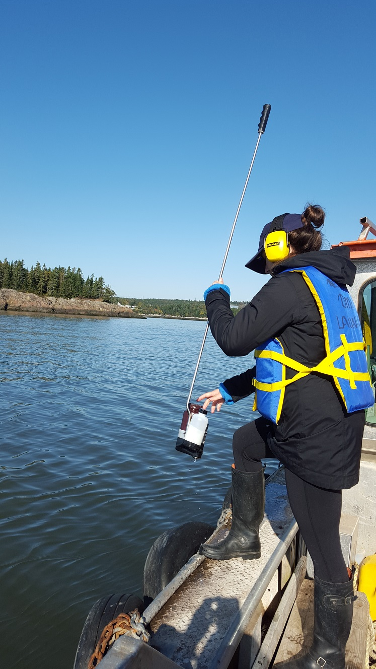 Collecting data in the Saint John Harbour