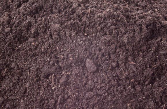 Loam / Compost 50%-50% Blend - $36/yard