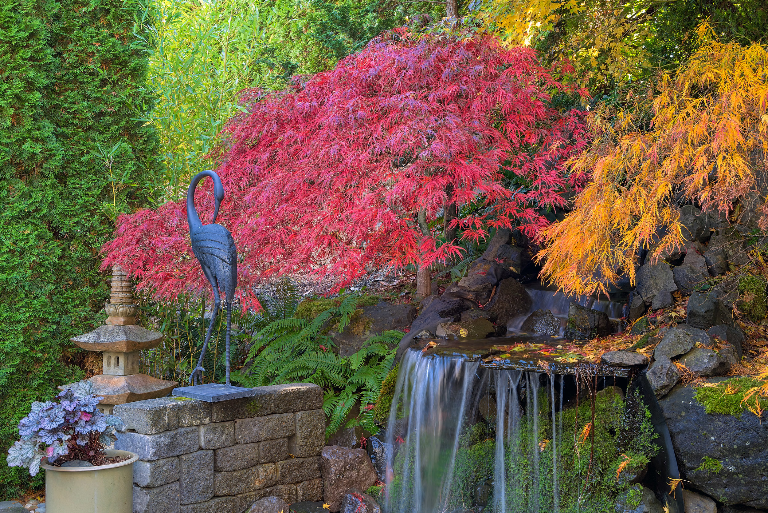 Must-Have Landscape Design Features and Elements for the Fall in Laconia, NH