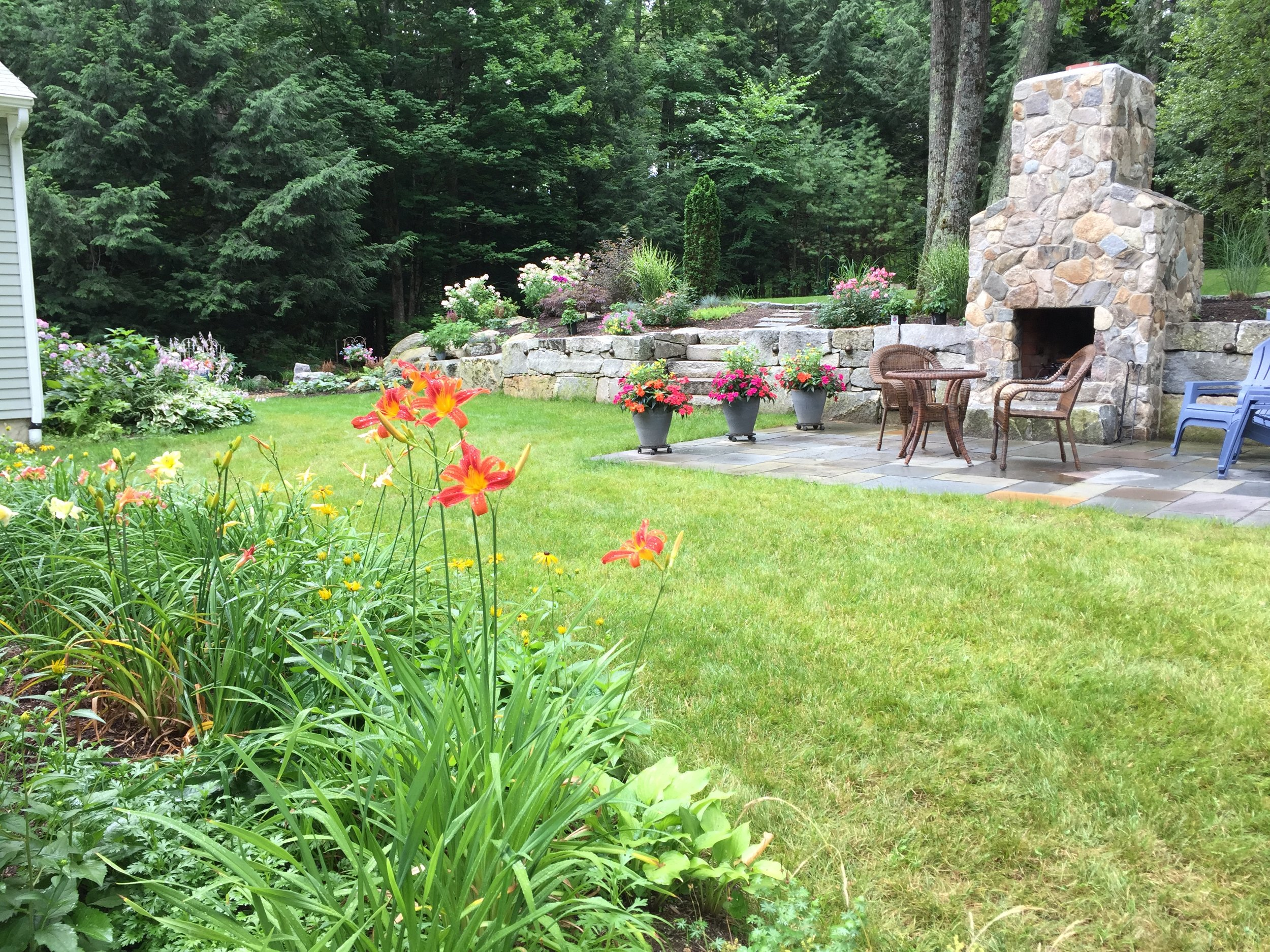 How to Tackle Your Next Stump Removal in Peterborough, NH