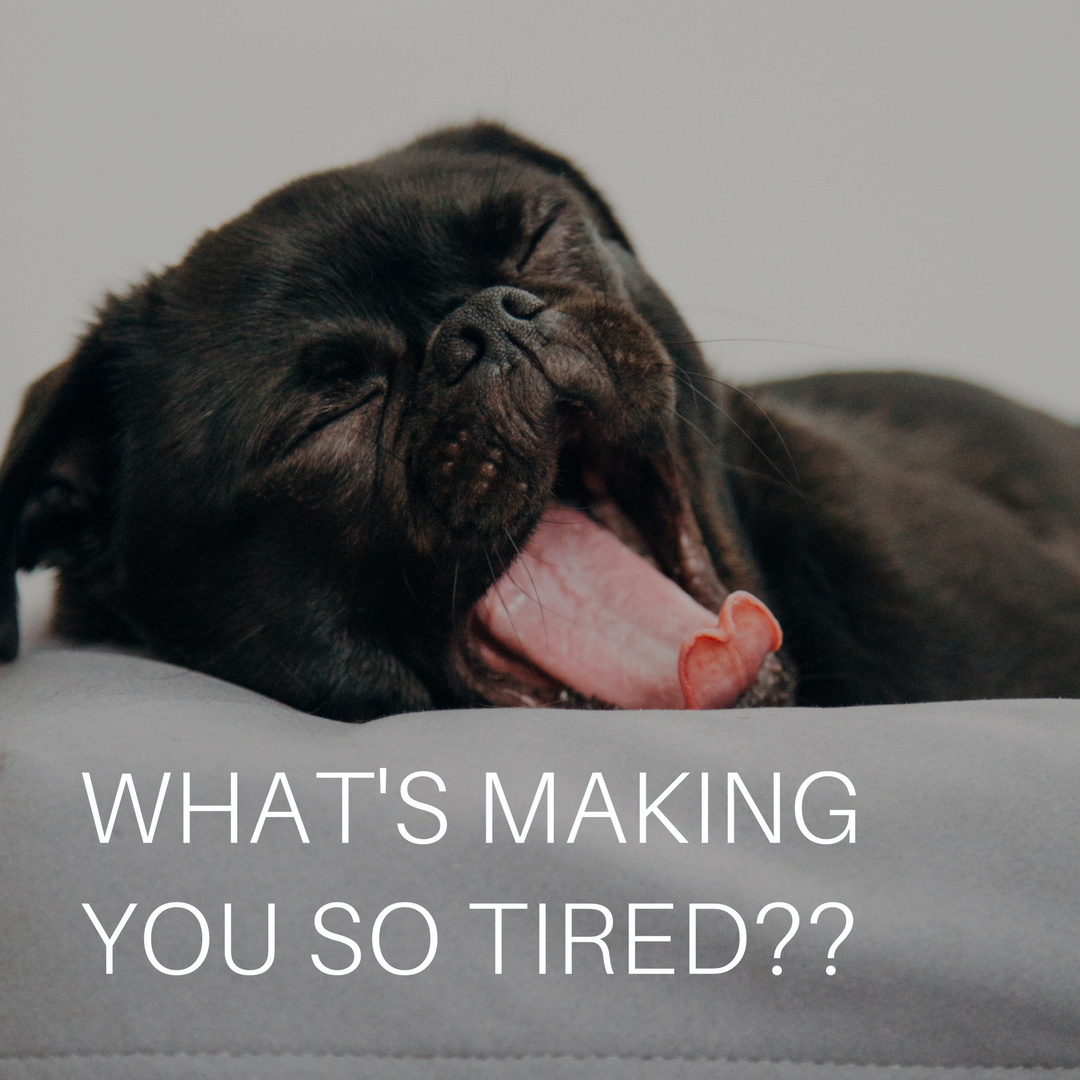 What's making you so tired_.png
