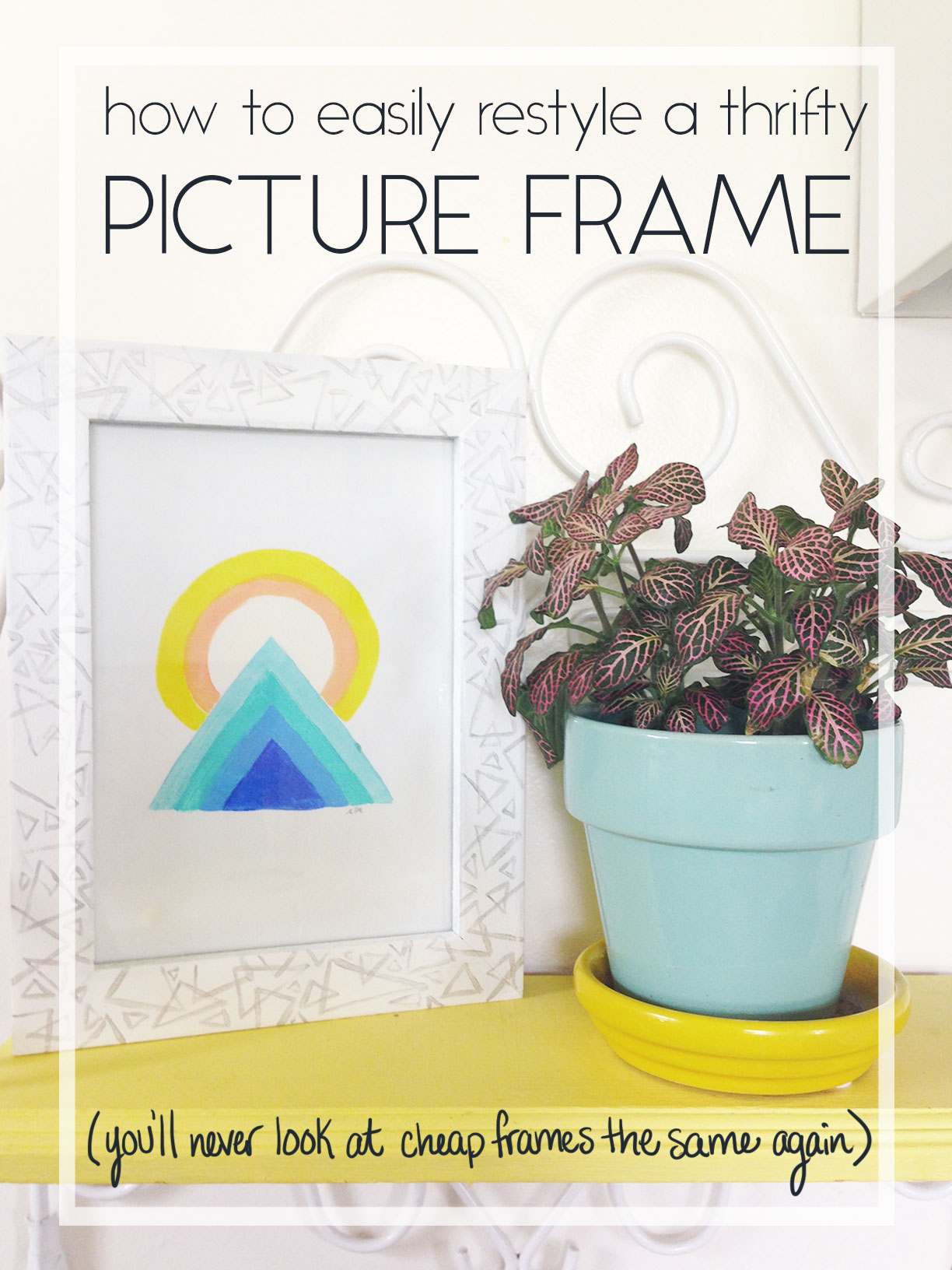 Frame-Header-Image.jpg