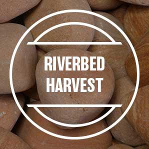 riverbed-harvest.jpg