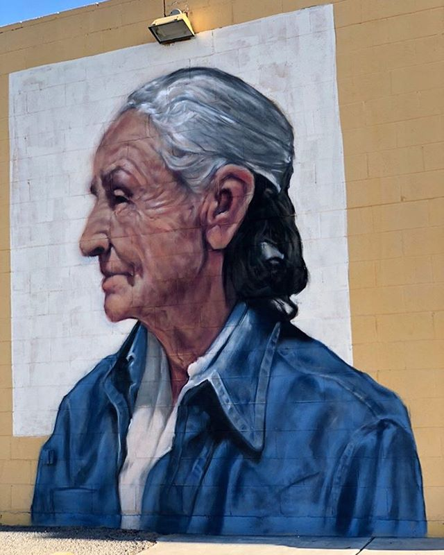 Portrait mural honoring Georgia O'Keeffe by @3nolam located outside Spirit Winds. #muralsoflascruces #muralhuntr #lascruces #publicart #puamuralonit #newmexico