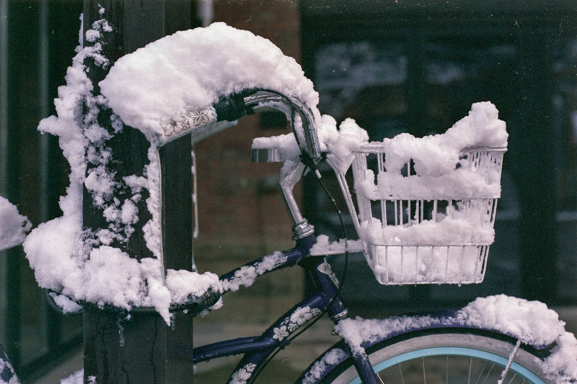 Film_aspen_bike_snow.jpg