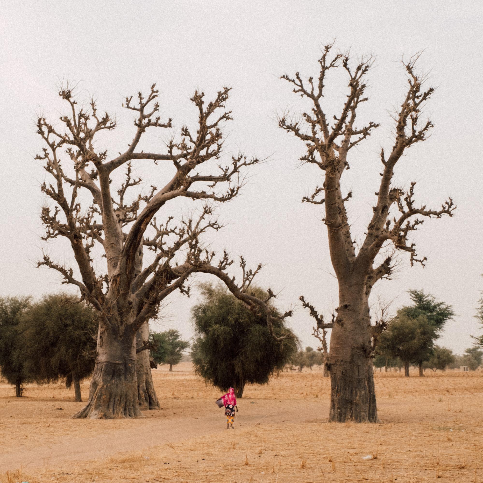 020517_Senegal_Day_3-44.jpg