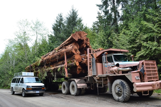 An oversize 'fat truck' on the road to Holberg.