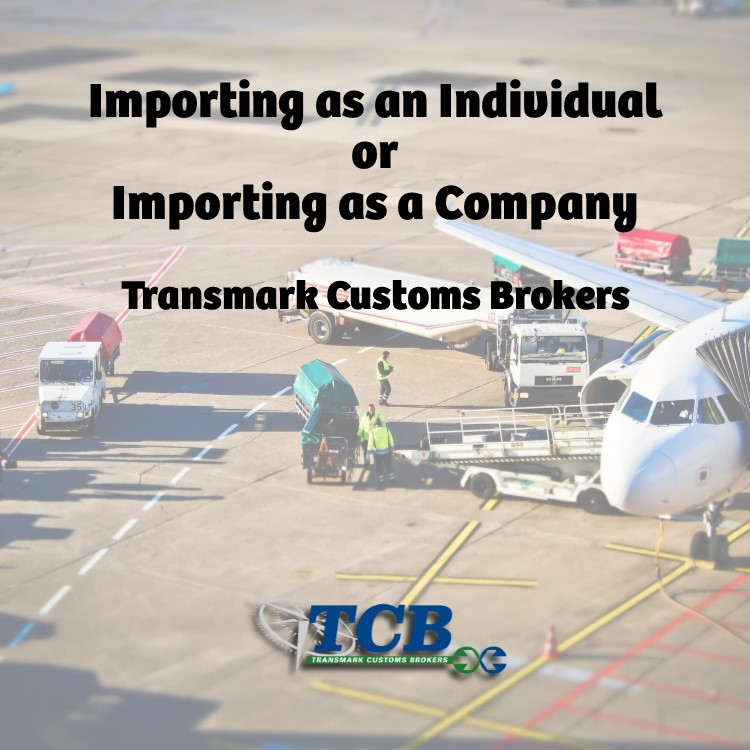 TCB Blog Import as Individual or Company.jpg