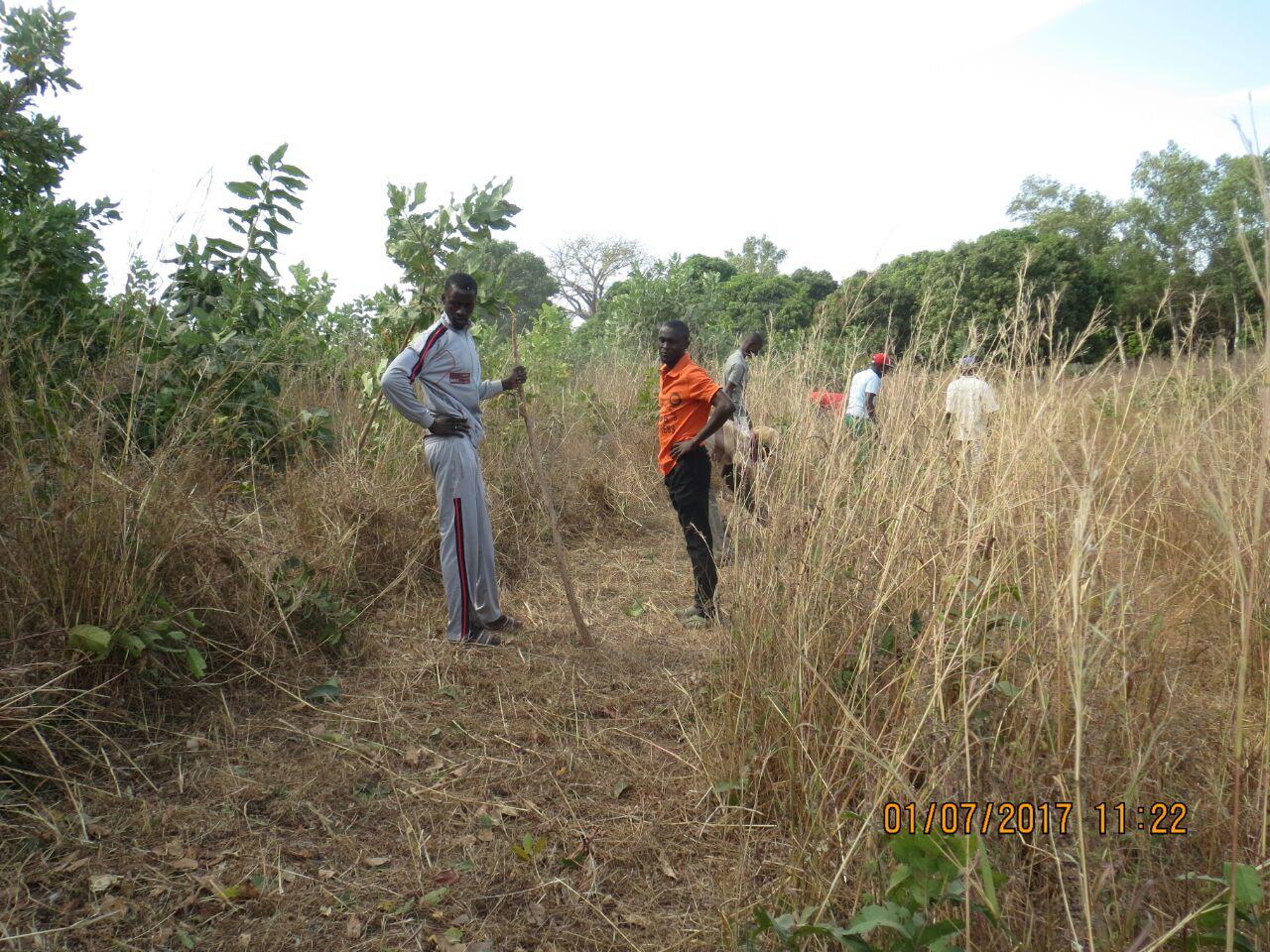 Tankular village clinic project-05.jpg