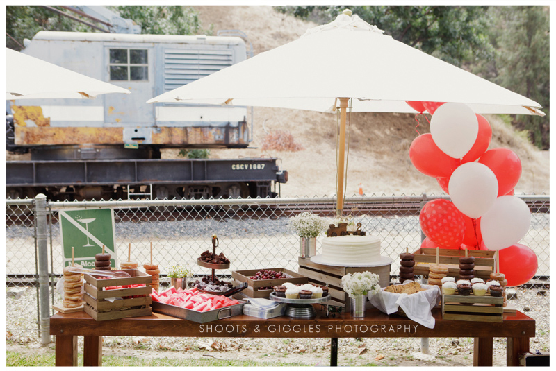 Los Angeles birthday party photographer  Travel Town