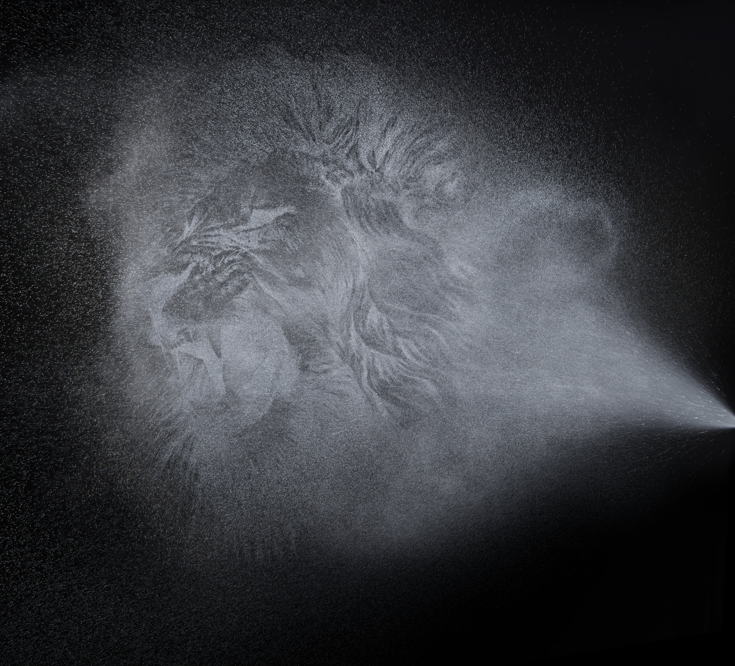 Spray_lion.jpg