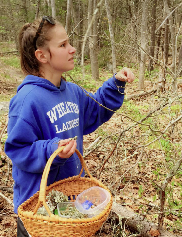 Giovanna collecting lichens in the Forest.