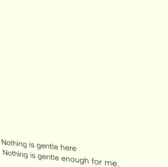 nothing is gentle Here