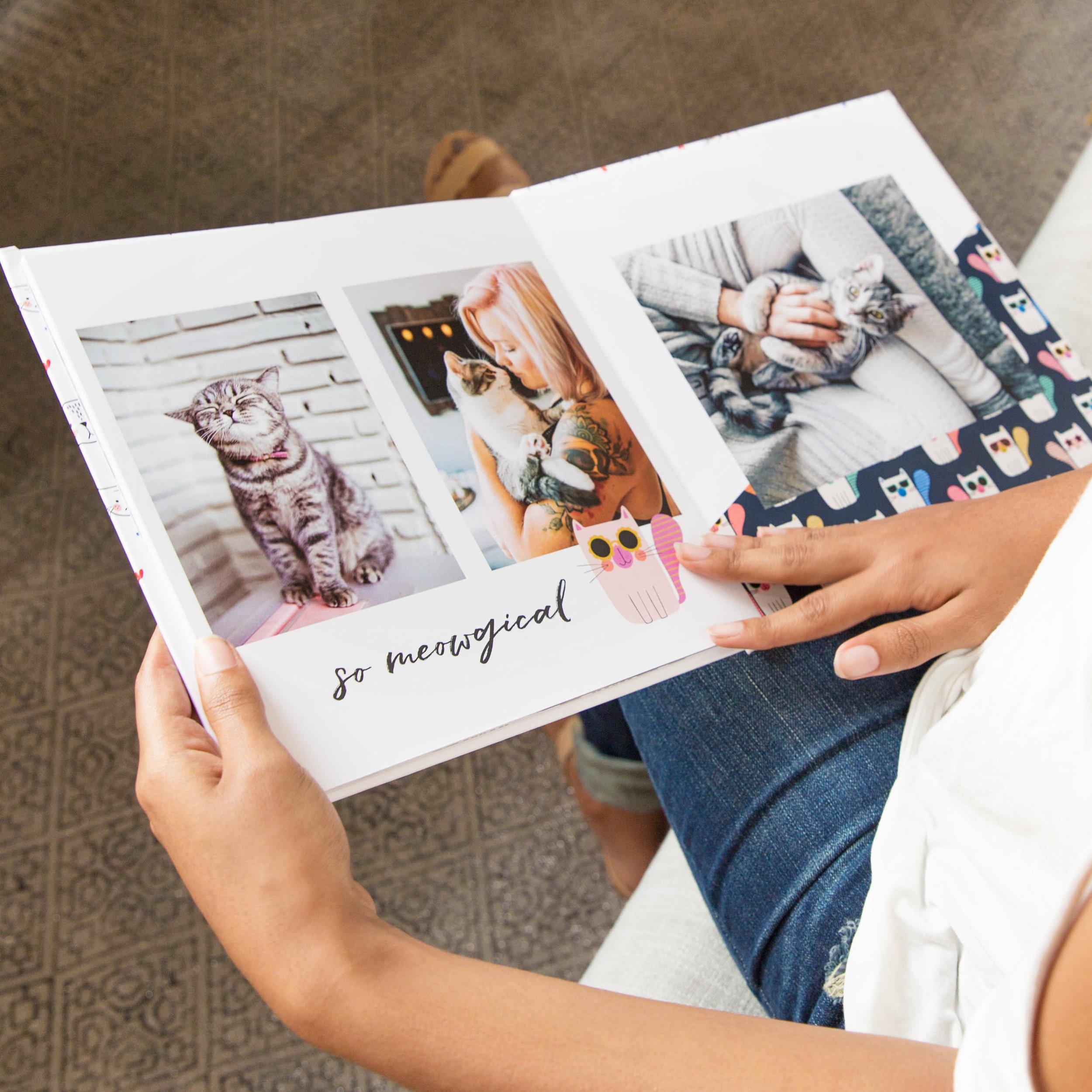 cat-photo-book