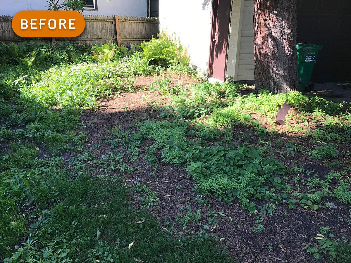 garden-1-before.jpg