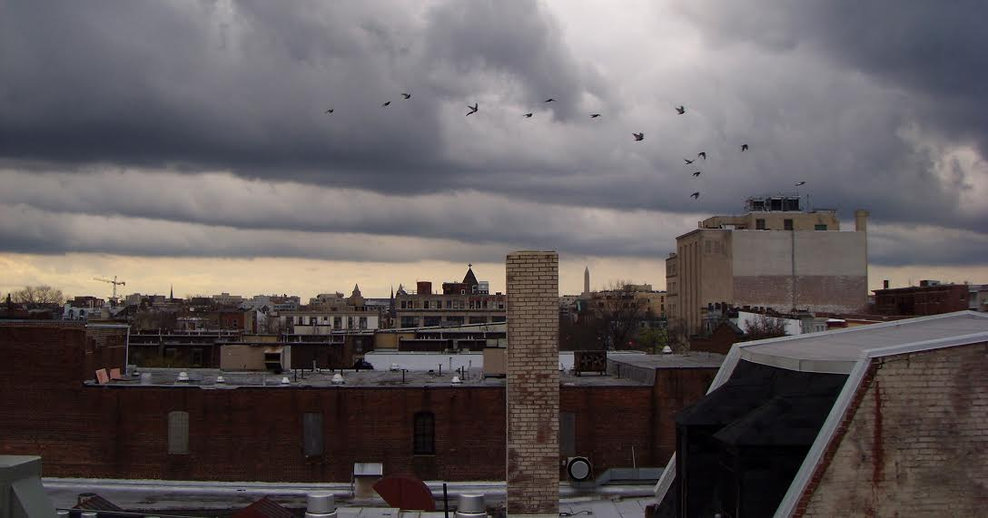View from atop Miele's studio on 14th street, Washington, DC