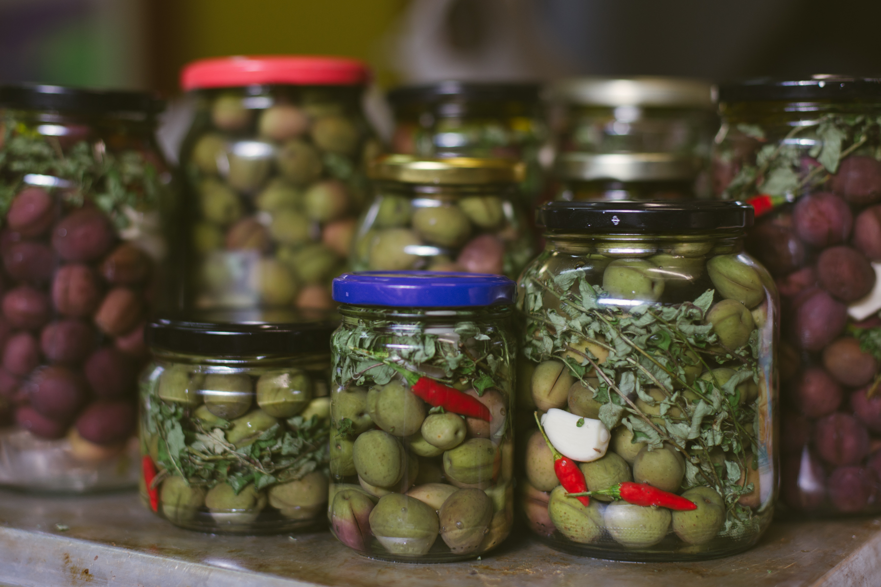 Here's the family portrait. Each jar was filled with brine and then topped off with olive oil to stop air from spoiling the goods (fingers crossed).