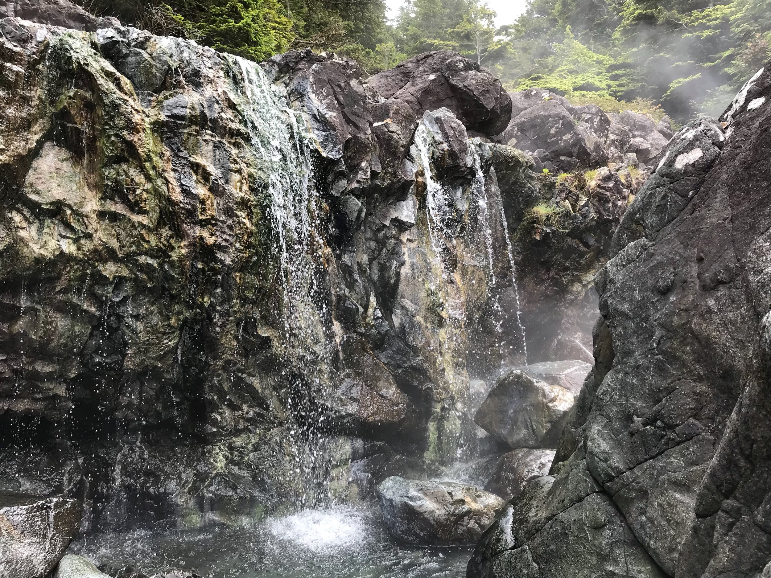 TOFINO HOT SPRINGS TOUR