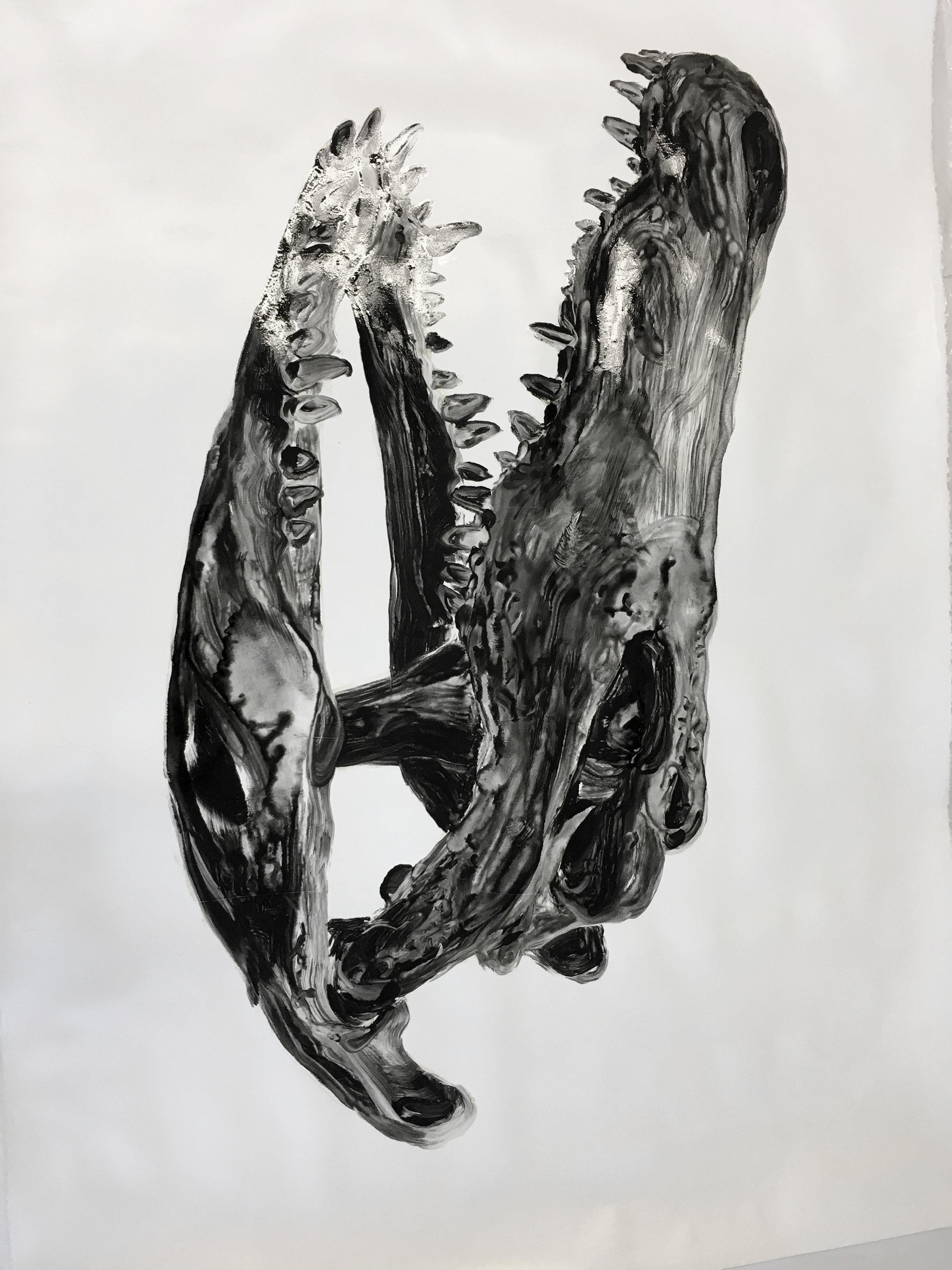 Crâne d'un crocodile  Huile sur papier