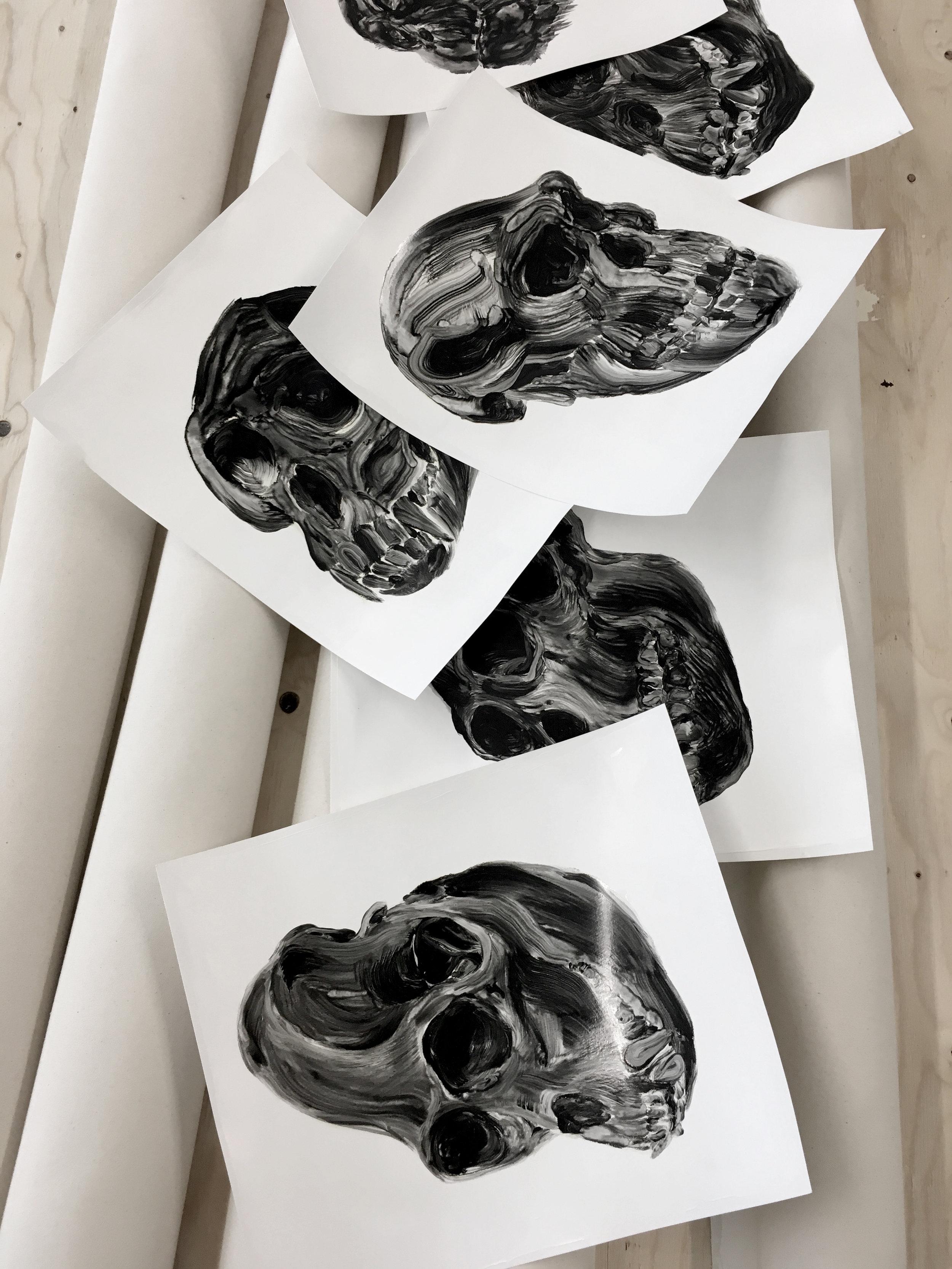 Crânes  Études à l'huile sur papier