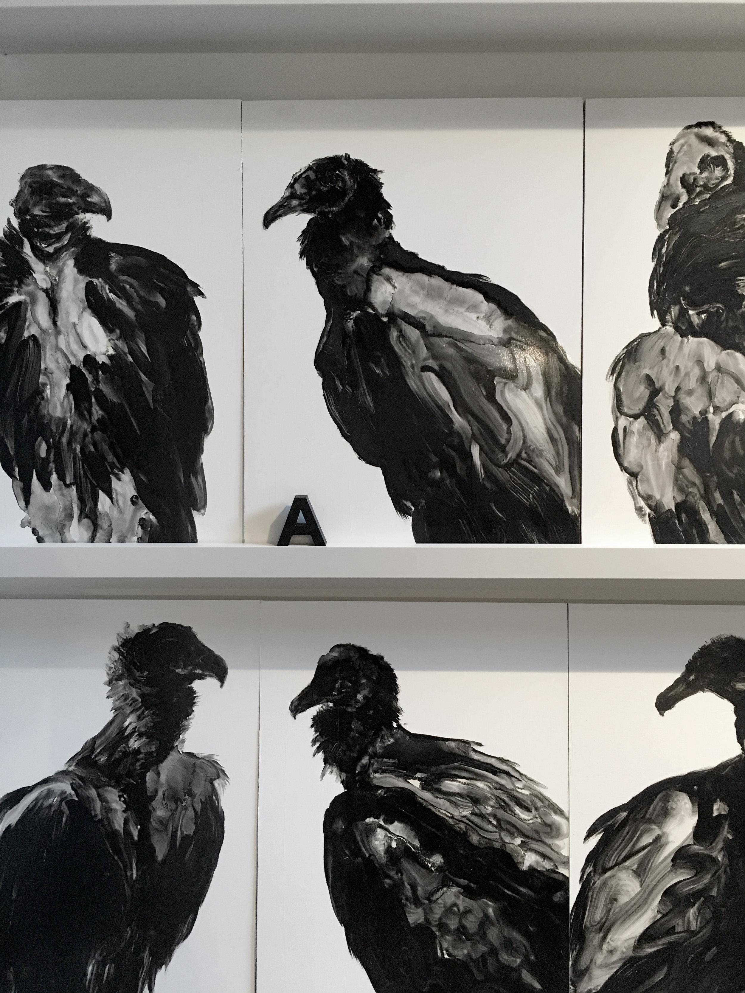 Série des vautours  Maison, Mile end, Montréal