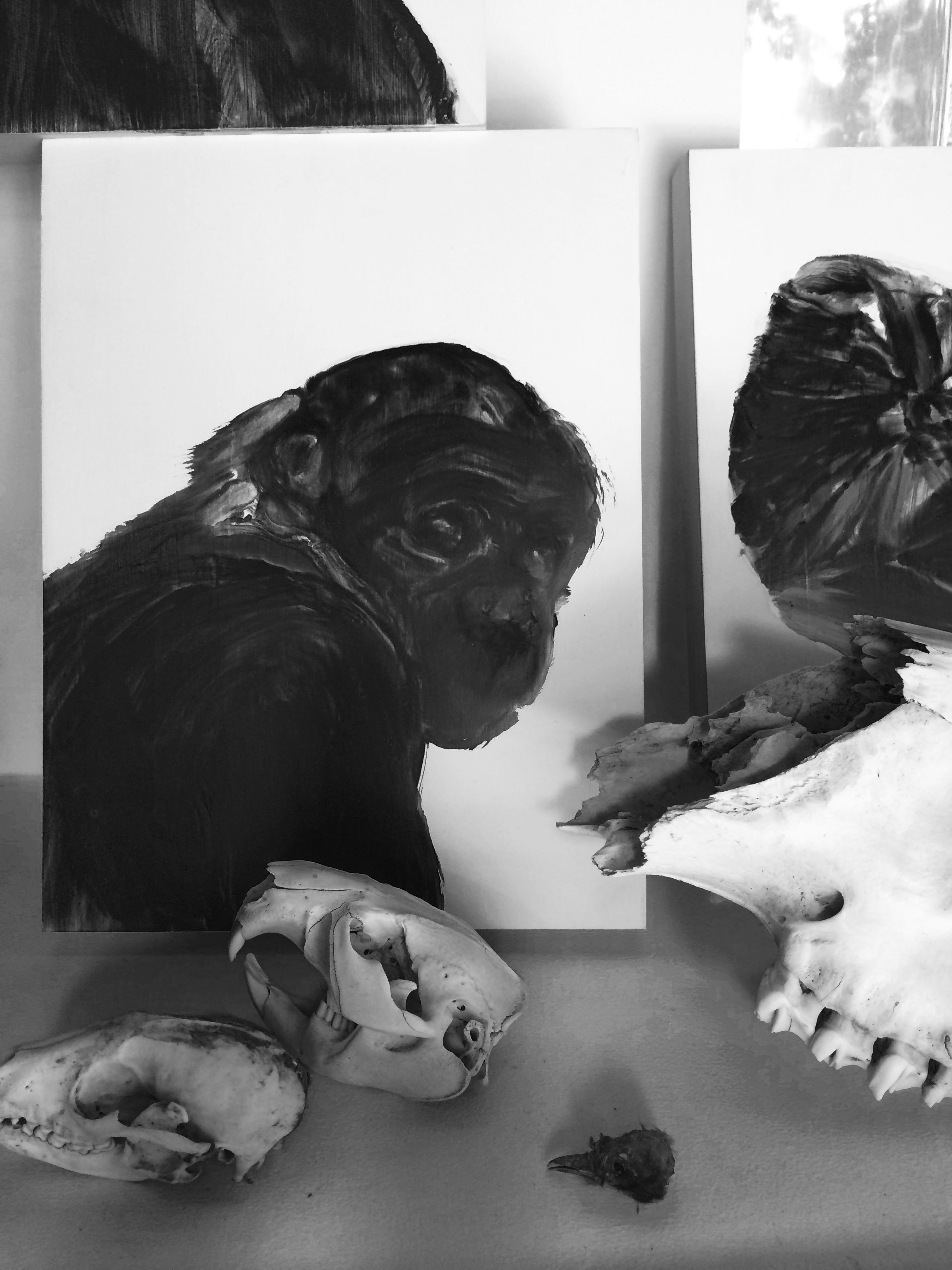Détails, portrait de singe, sac, crâne  Huile sur panneau