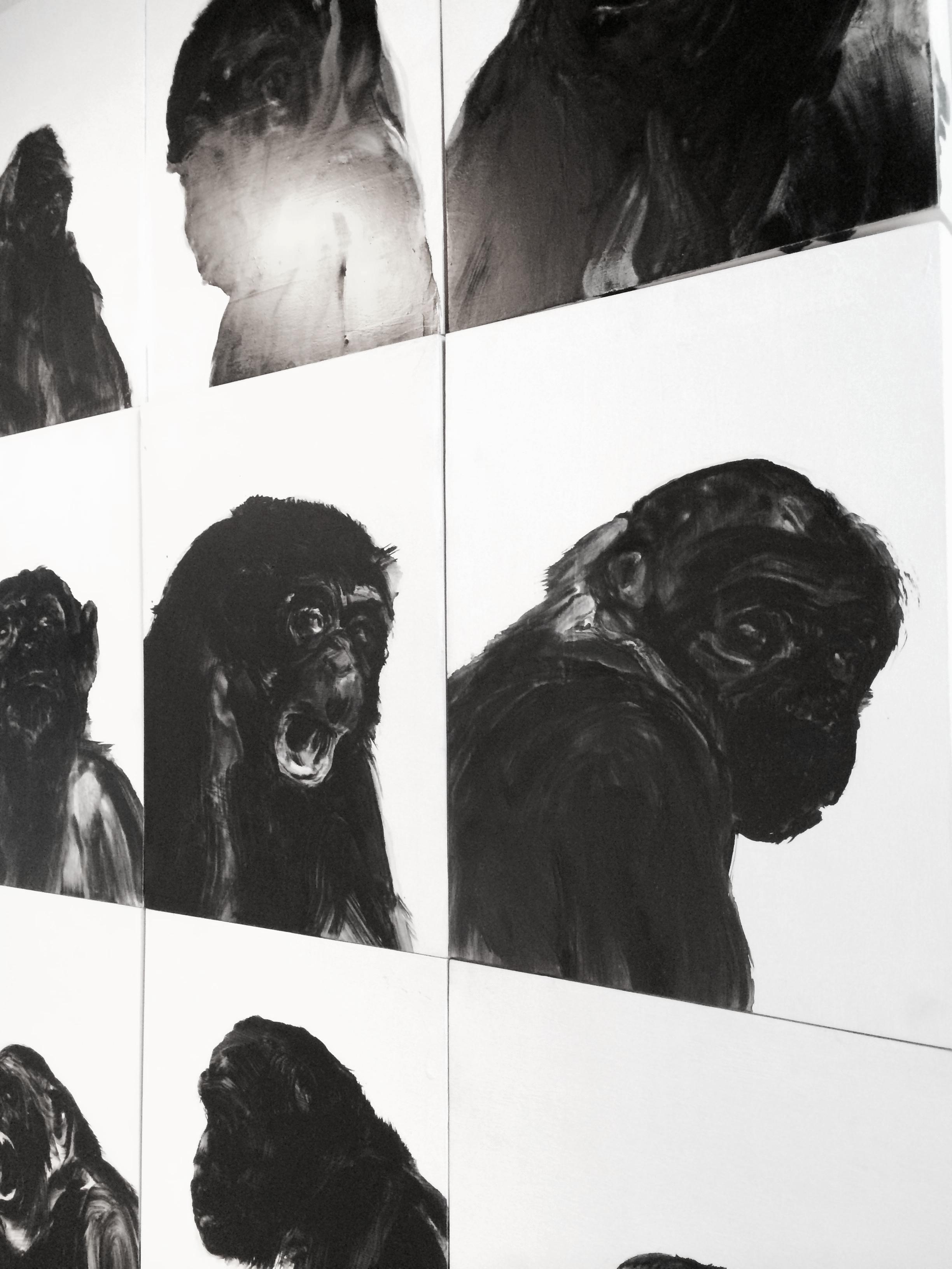 De la série des portraits de singes  Huile sur panneau