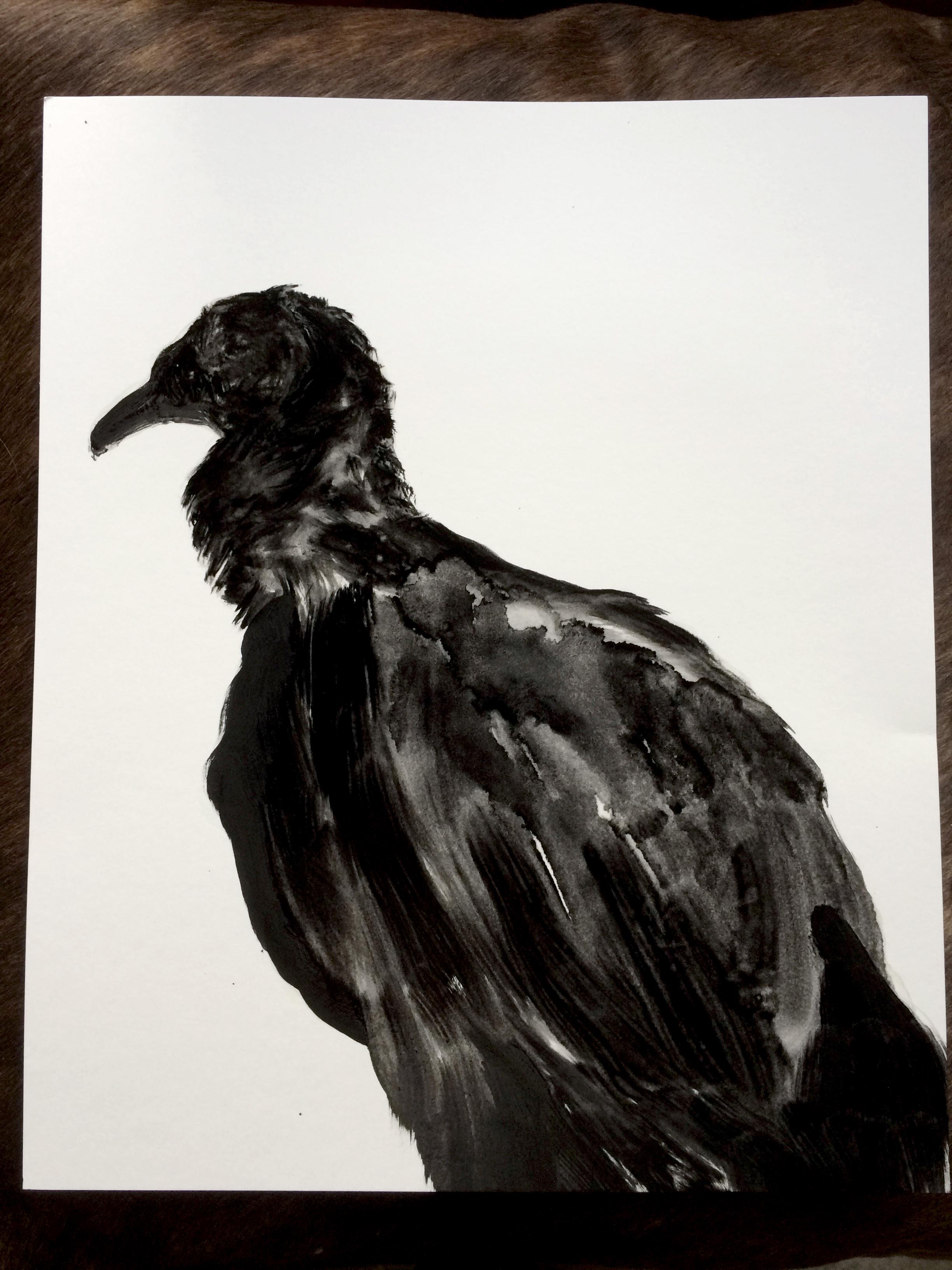 De la série des vautours  Huile sur panneau