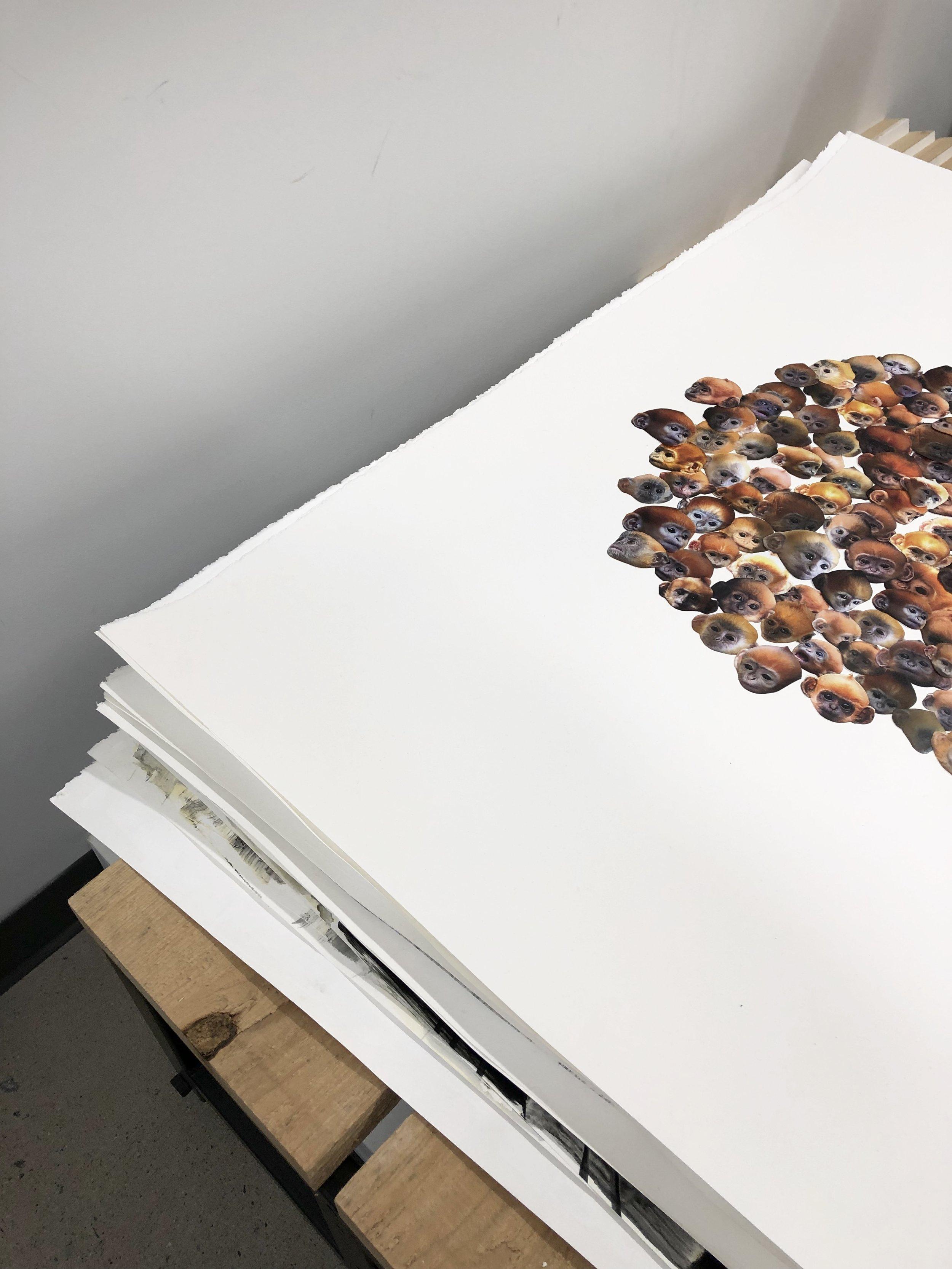 Gibbons collage sur papier 2018