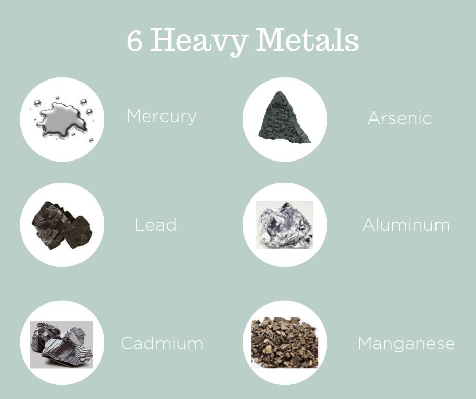 Heavy Metals Graphic.png