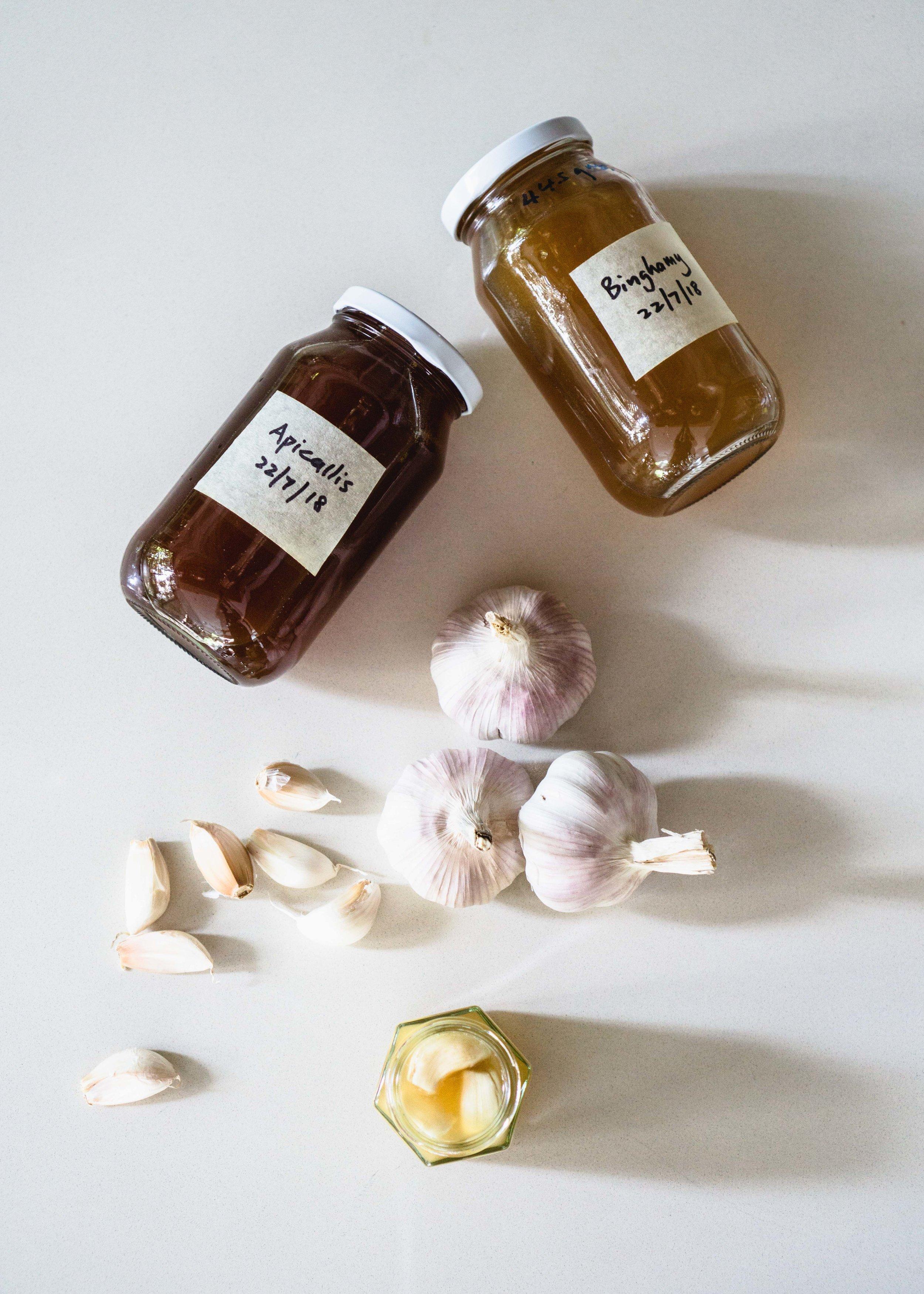 Fermented Garlic Honey