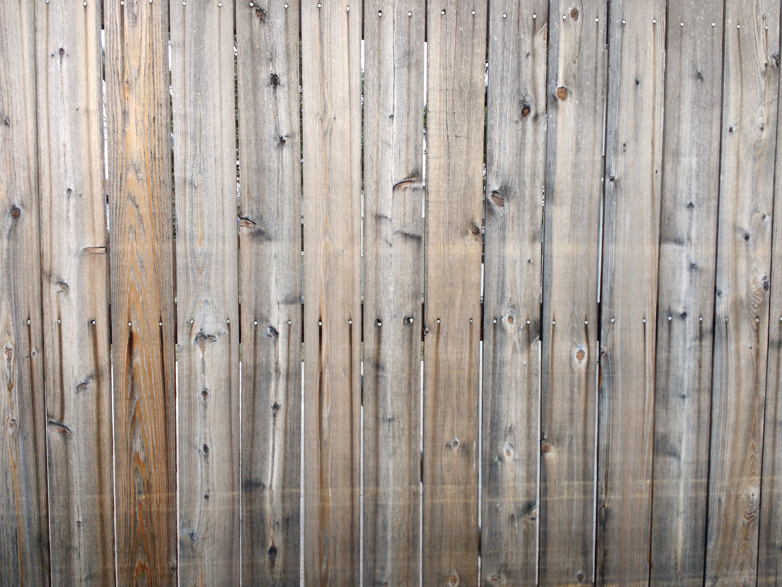 Galvanized nails dripping on cedar fence