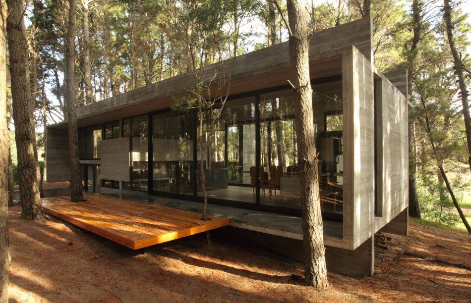 Tacoma Tiny Home Builder Modern Concrete House.jpg