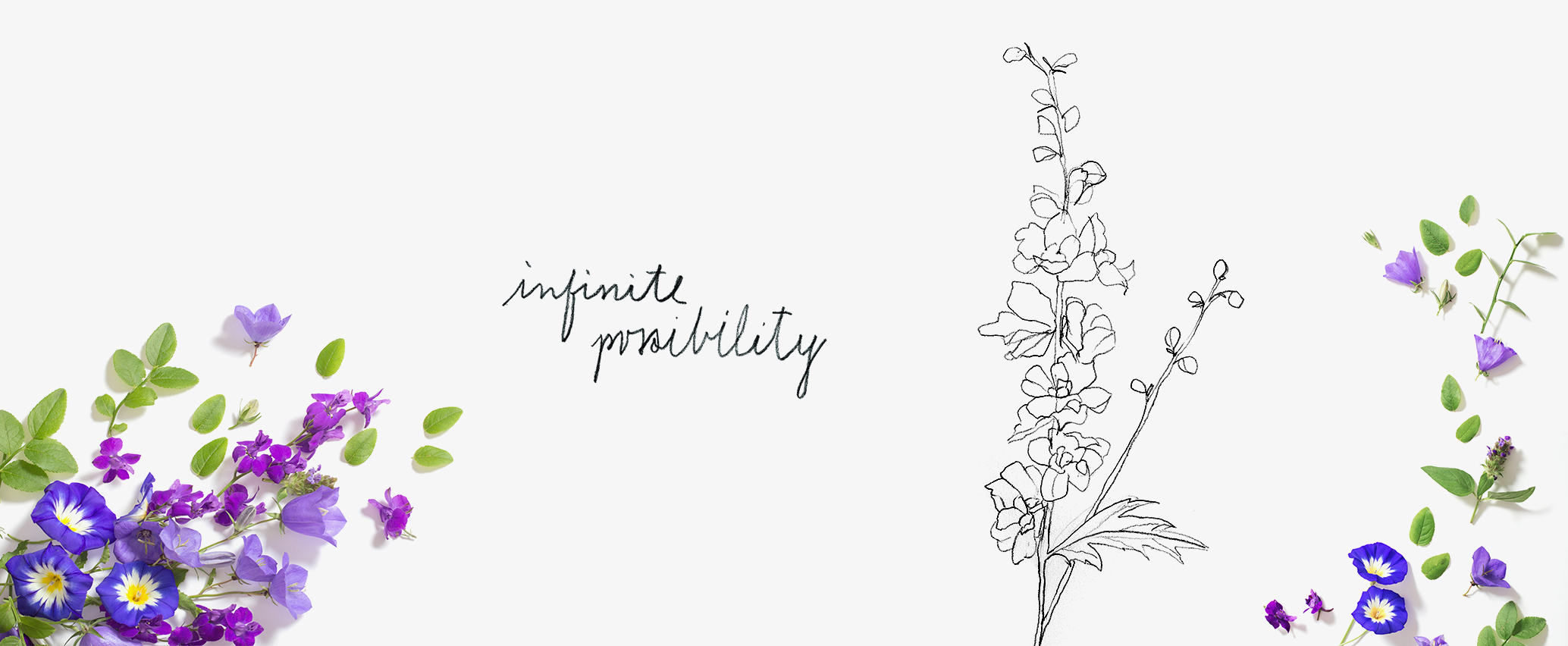 27-delphinium-infinite-possibility-poster-banner-event.png