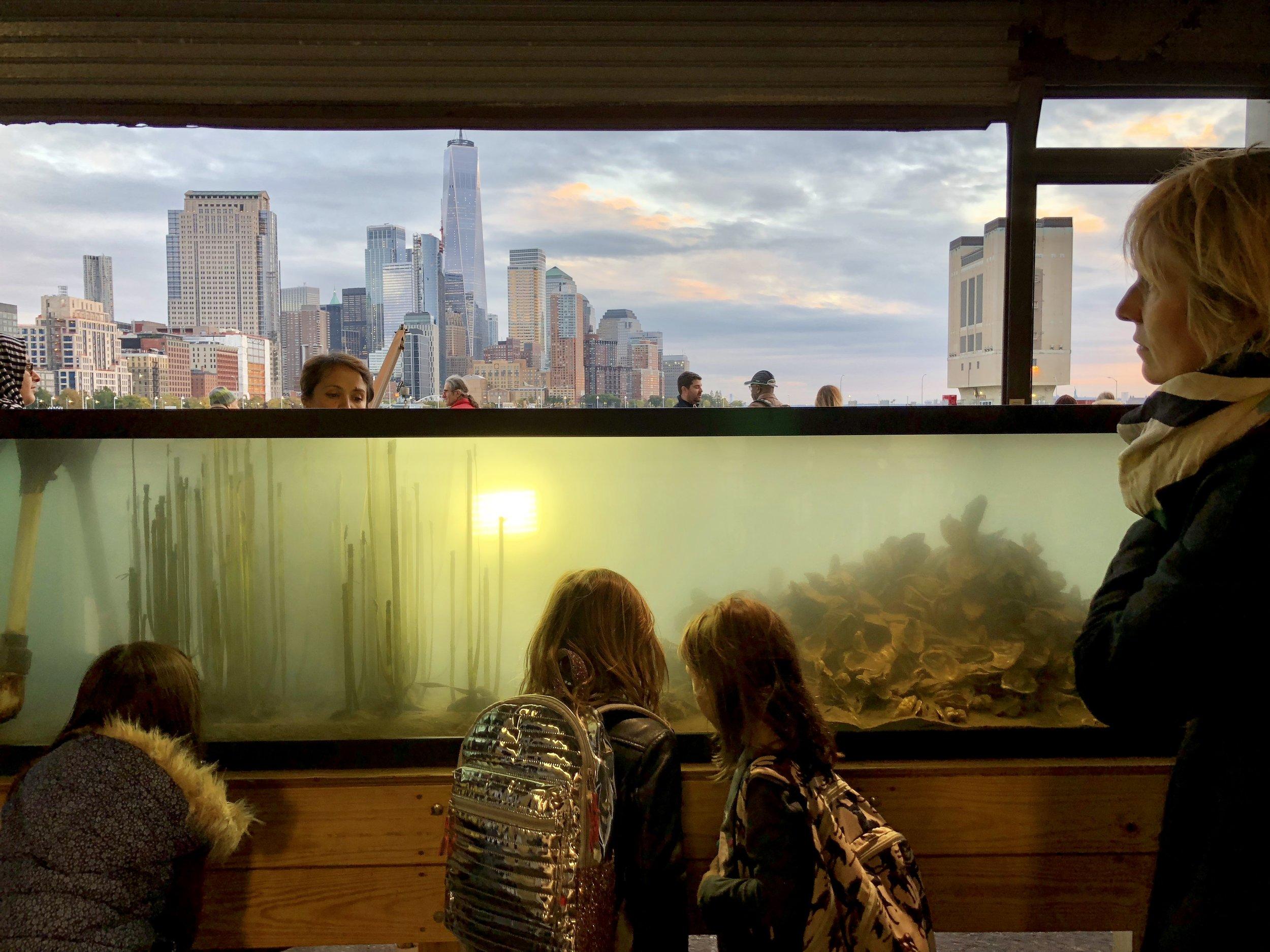 Oyster Reef Ecosystem exhibit tank at the Wetlab Estuarium entrance.