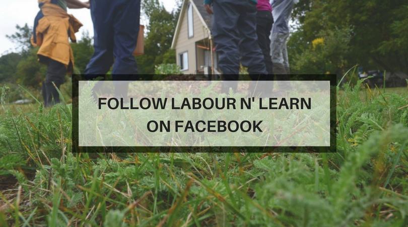 Labour N' Learn.jpg